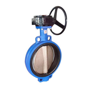 D371X  Wafer butterfly valve with gear box